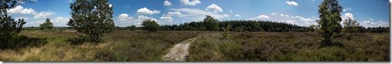 Westeindse Heide-paorama